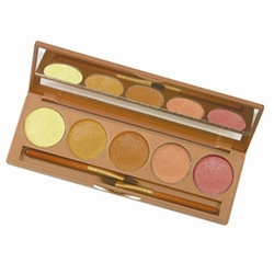 Corrector Palette 5 Colors - Global