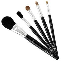 Holiday 5-Piece Brush Set